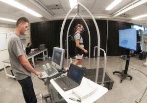Rehab engineering in Franz lab