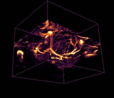 Imaging in Dayton Lab